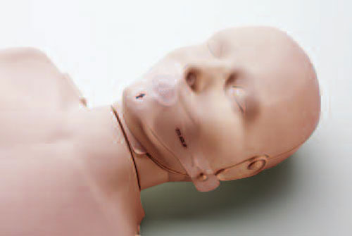 Prestan Manikin Reliance Medical